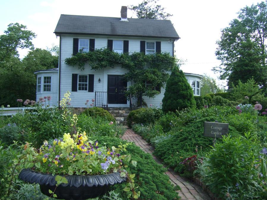 Cottage Garden by imjustellingyou
