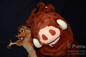 Douglas Pumbaa and Timon Plush