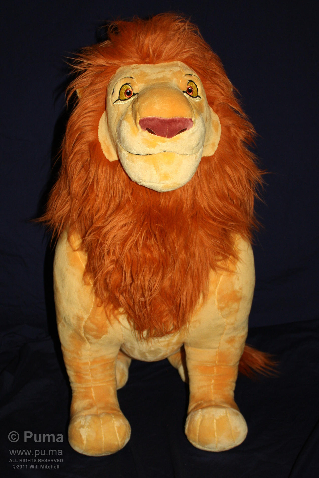Lion King - Mufasa plush 2011 by dapumakat