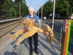 Steiff Life size Lioness plush