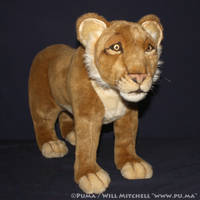 Hansa - Lion Cub plush