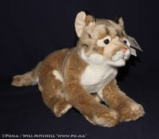 Leosco 'Save Our Space' Puma Plush by dapumakat