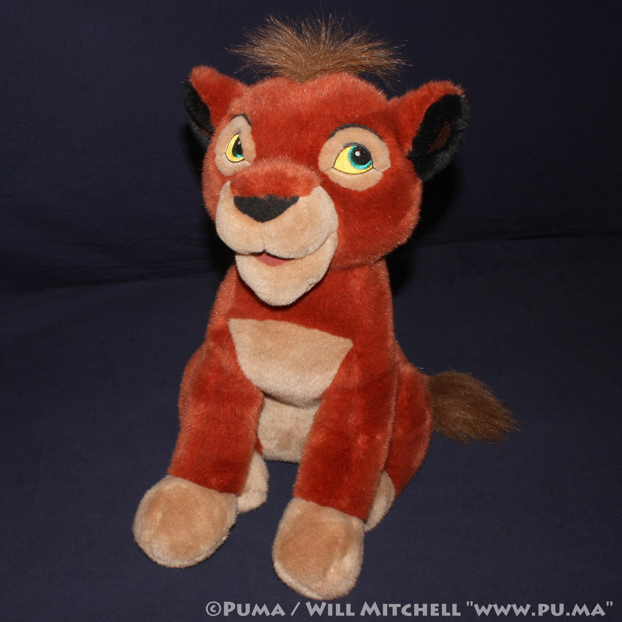Kovu plush from Disneystore Frankfurt, Germany by dapumakat