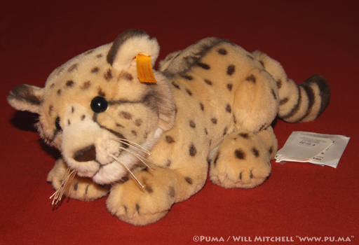 Steiff - Rocco Cheetah Cub plush - EAN 064494