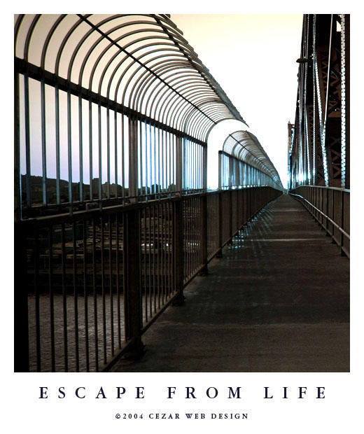 Escape From Life by cezars