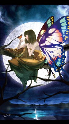 the Butterfly Dream
