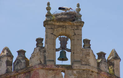 stork on a church