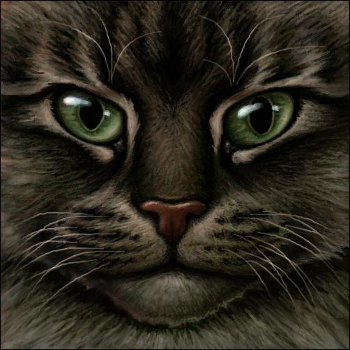 Tigerfang ~+~ Senior Warrior of ShadowClan Warrior_cat___dark_tabby_by_wynnyelle-d3k3axj