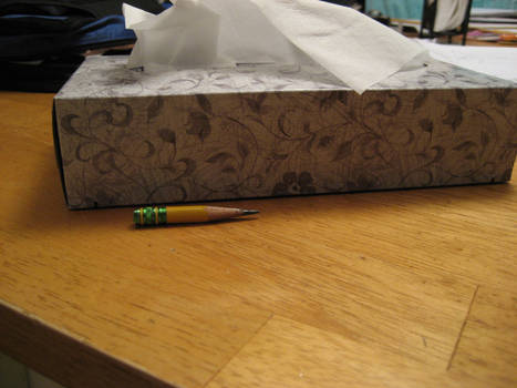 Little pencil and a tissuebox