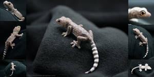 Baby Tokay Gecko Pin