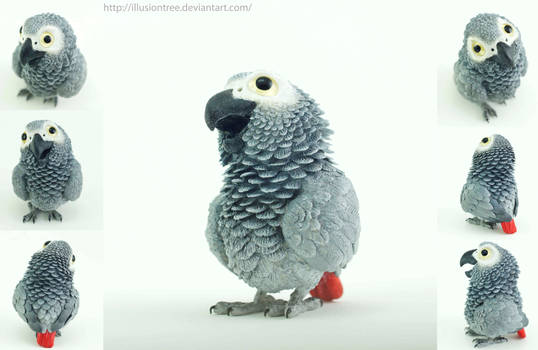 African Grey Parrot Sculpture