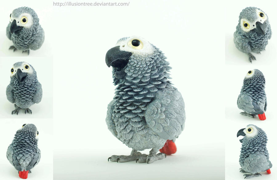 African Grey Parrot Sculpture by IllusionTree