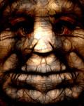 VM face 3