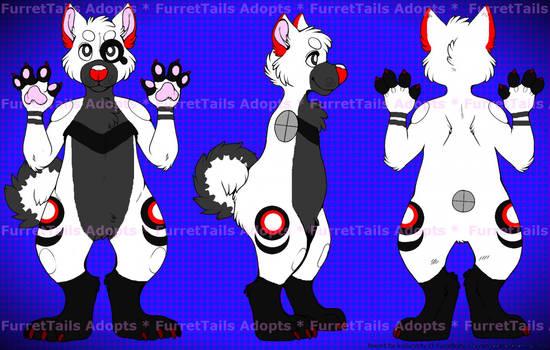 -ADOPT- Clue Canine -ADOPT-