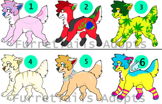 6/6 Canine Adoptables *ADOPT*