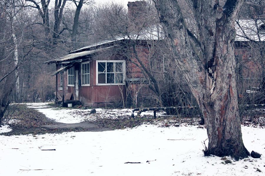 House by Arina1