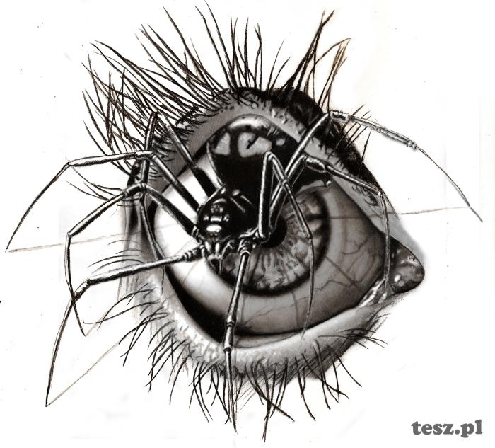 Under the eyelid by TeSzu