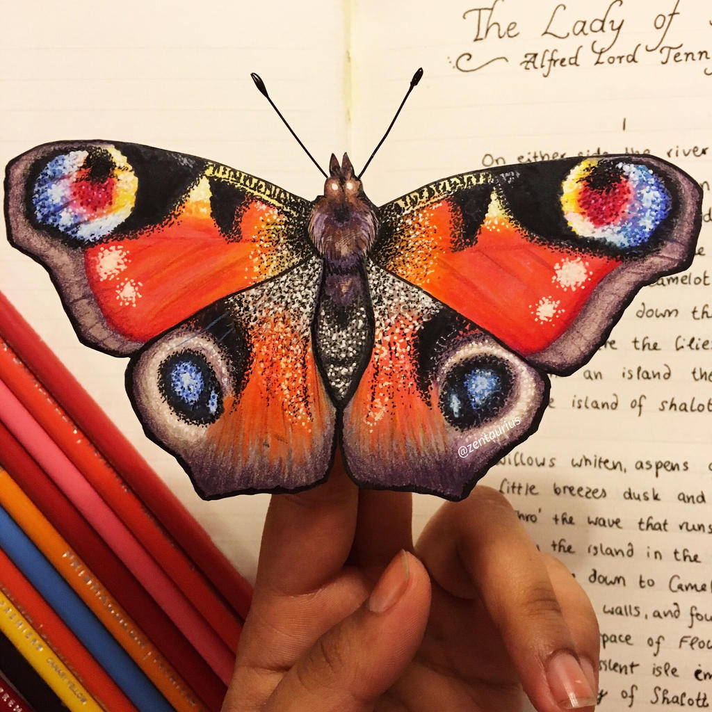 Peacock Butterfly Drawing By Zentaurius On Deviantart