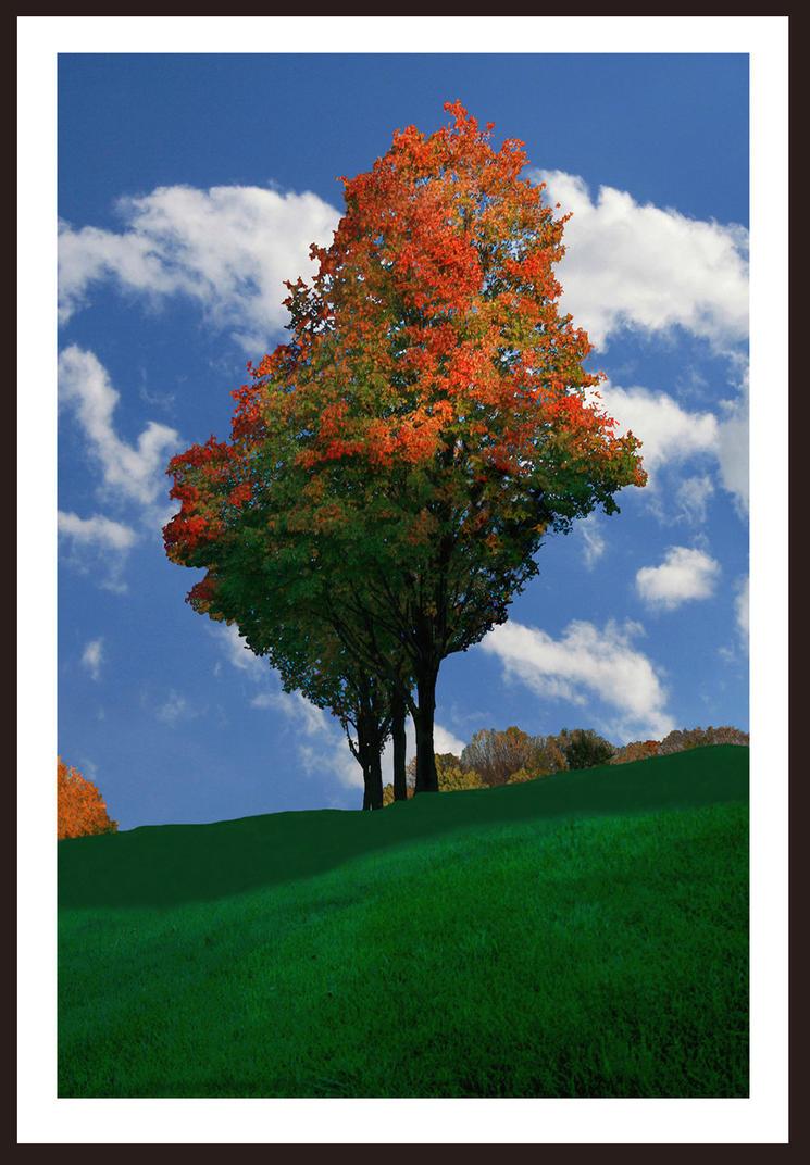 Autumn View 01 by buildingclimber