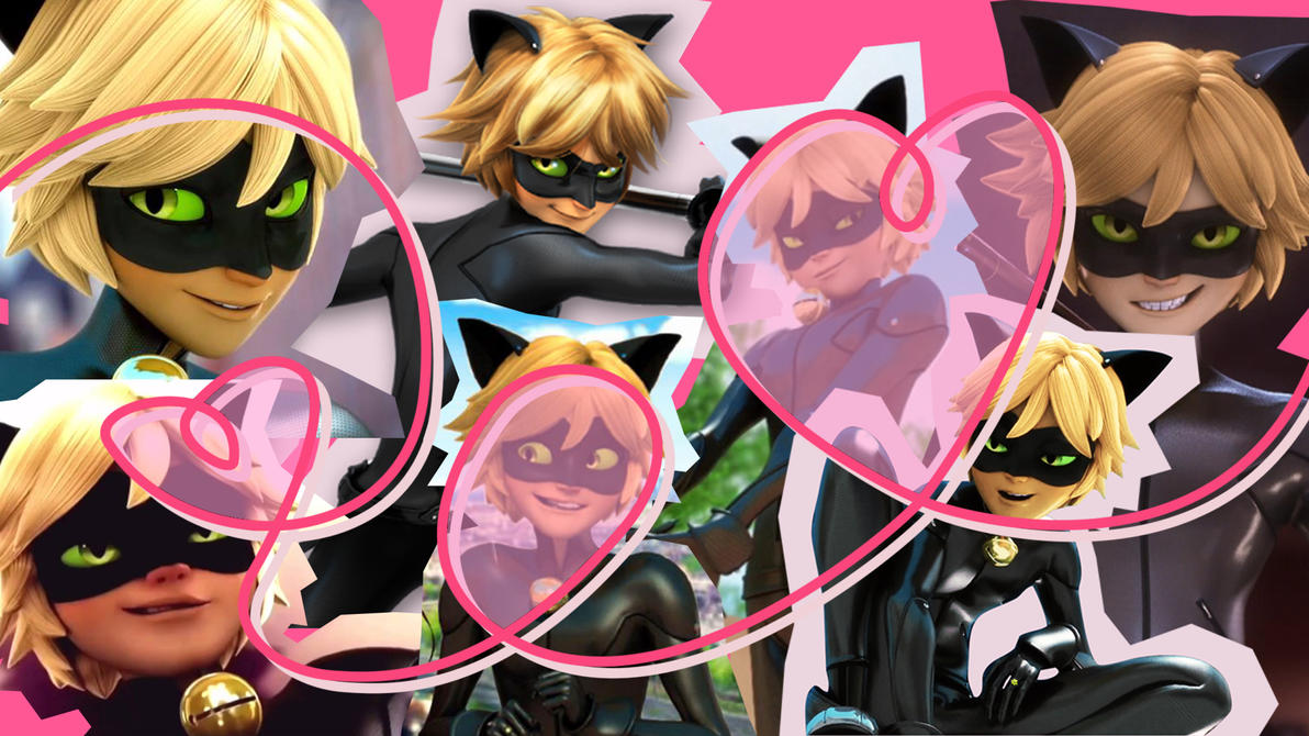 Chat Noir Wallpaper By Mltrashdump