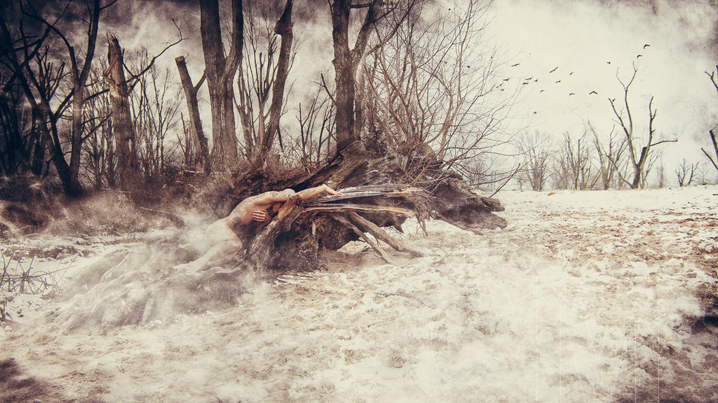 :roots: by virginval