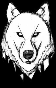Wolf + Bear