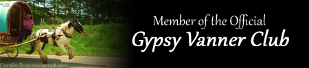 I'm a member of the Gypsy Vanner Club!