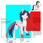 Contest Art: Knights of Harmony by kyo4kusanagi