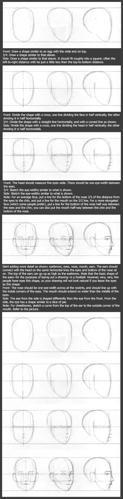 Basic Head Tutorial: Layout by timflanagan