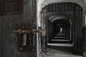 prison s.e.x. by schnotte