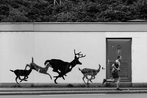 on the run by schnotte