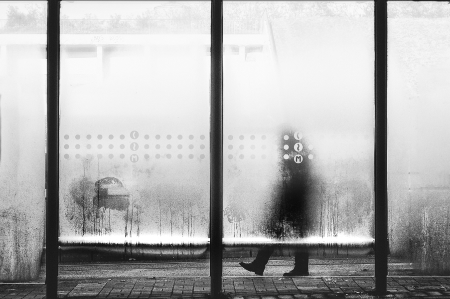 the wait by schnotte