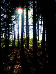 looming shadows by tmhamblin