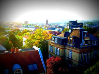rooftops by tmhamblin