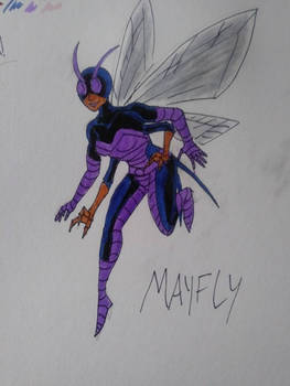 The Mayfly - Colored