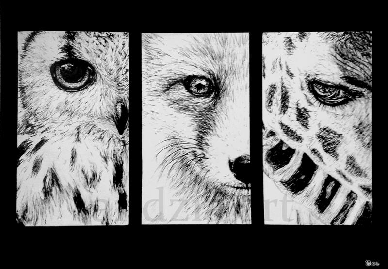 Eyes ( Owl, Fox, Giraffe) by Anna655