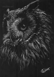 Black owl by Artopolosis