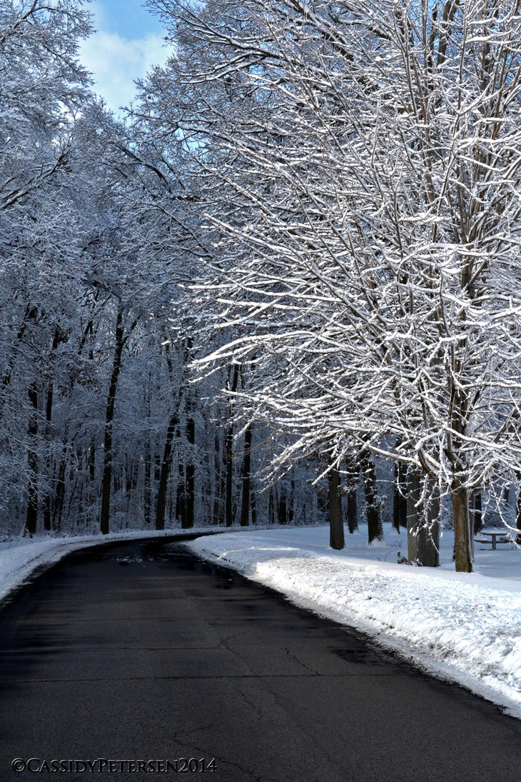 Ice Path by CCFUREVA