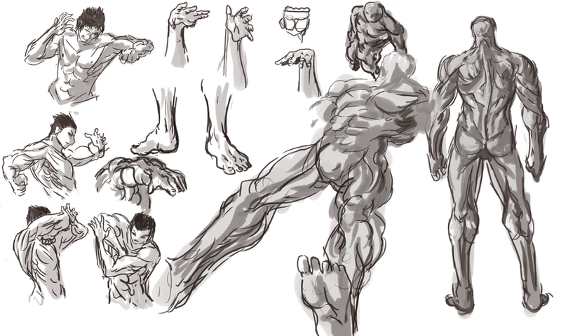 Male anatomy practice by Frost7 on DeviantArt