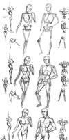 Female and Male Anatomy Comparison