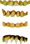 neanderthal teeth png kit