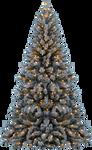 XMAS TREE PNG