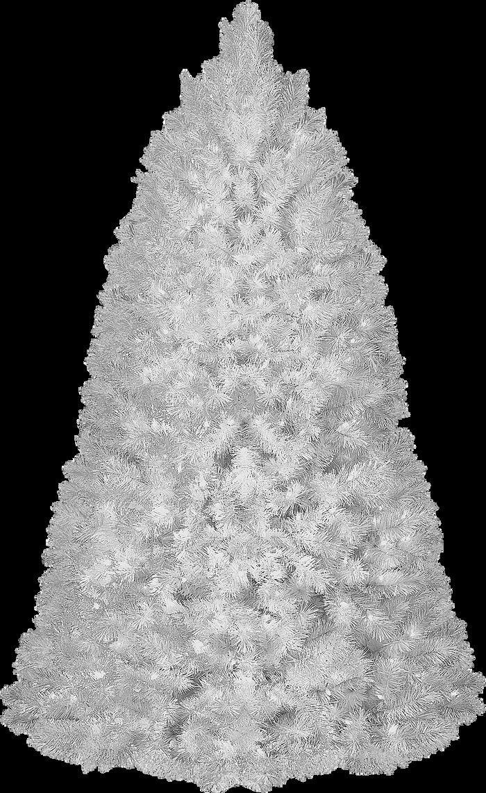 Bg Christmas Tree Png By Dbszabo1
