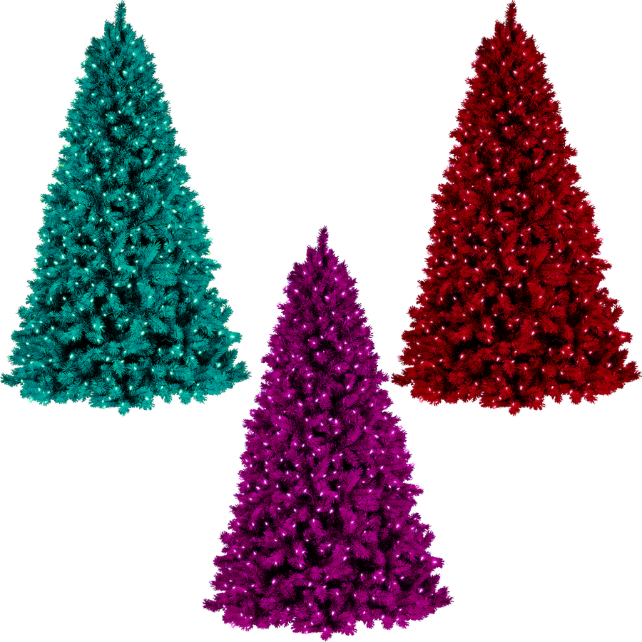 christmas trees png by dbszabo1