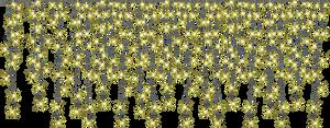 misc bg lights png