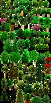 Colassal Mega Trees PNG 25MB