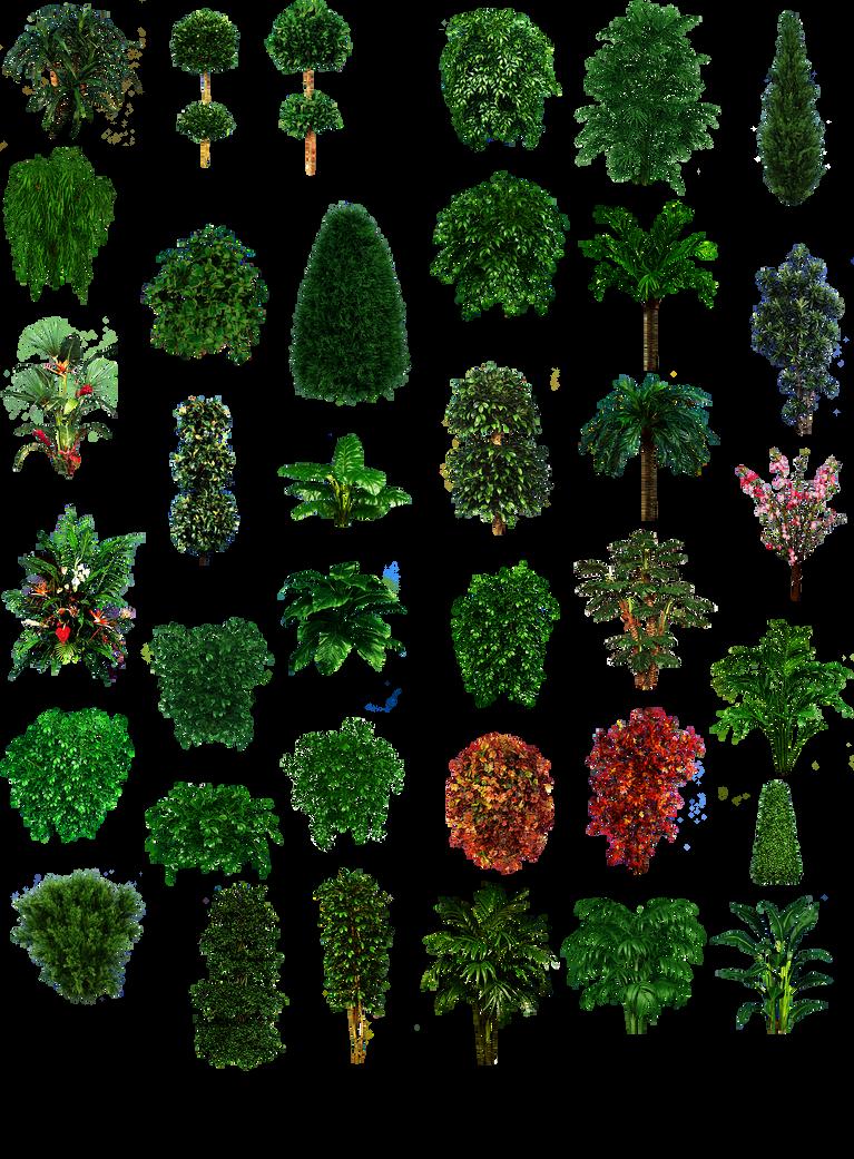 Misc plant tree texture png by dbszabo1 on deviantart - Comment decorer un grand vase transparent ...