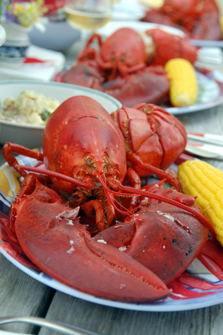 Maine Lobster Food Truck Fort Worth