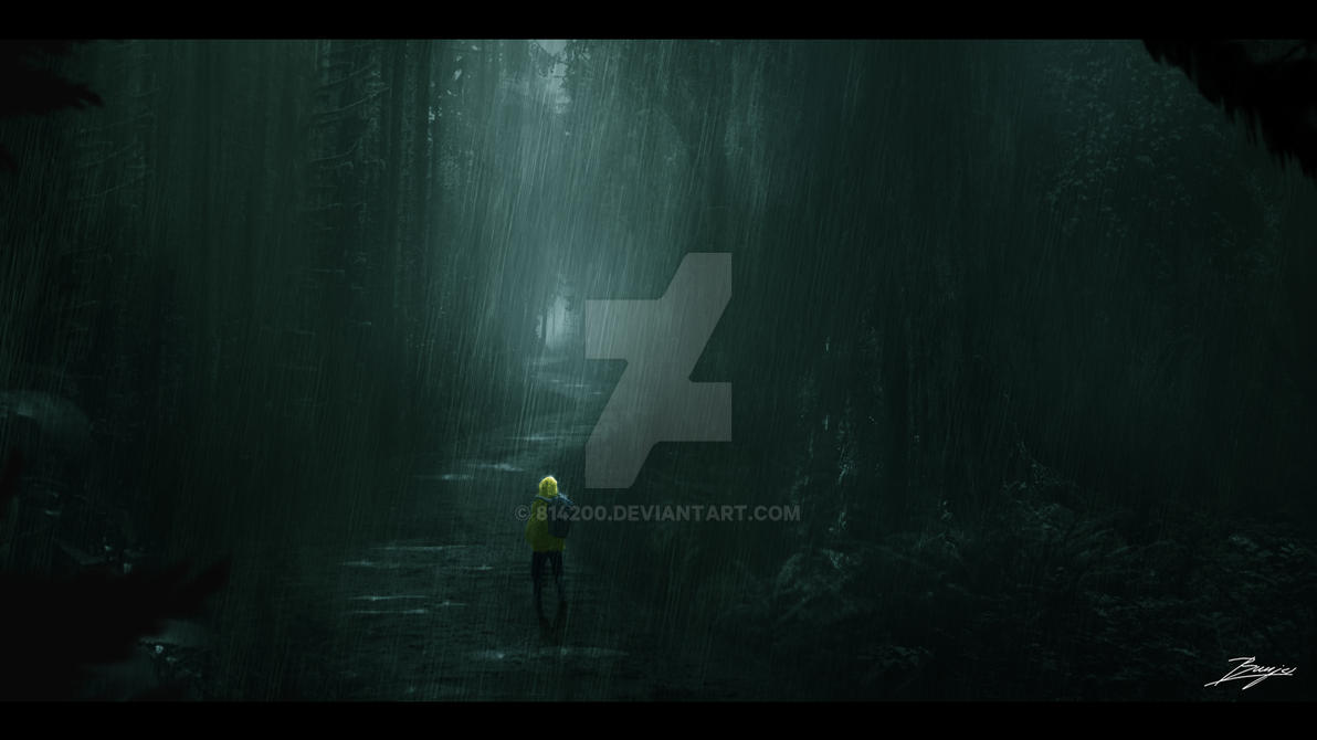 Forest Concept by 814200