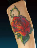 Rose by franknardi2